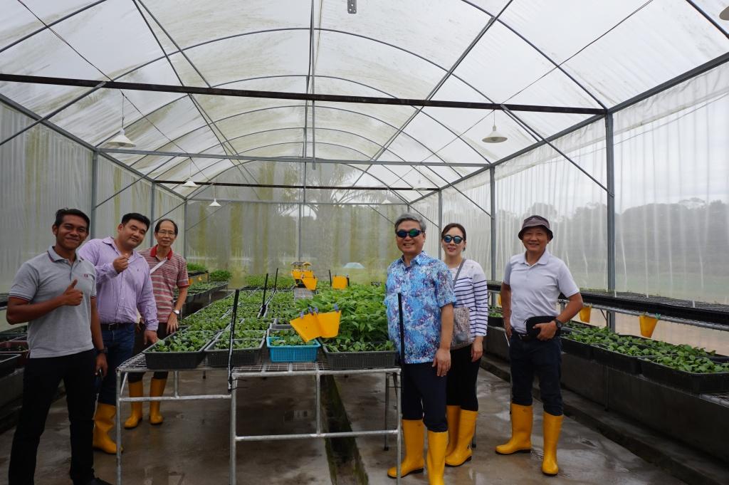Panti 농장 방문: 말레이시아 조호에서 생산하는 유기농 재배 채소